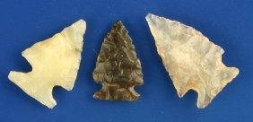 Three Exquisite Translucent Plains Birdpoints
