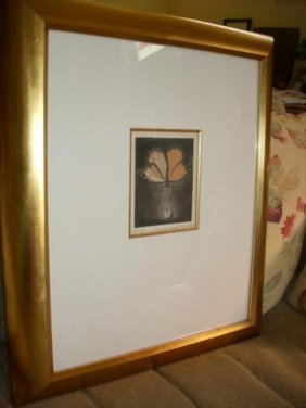 Pinned Drop Mezzotint By G.H. Rothe Framed To 20x23