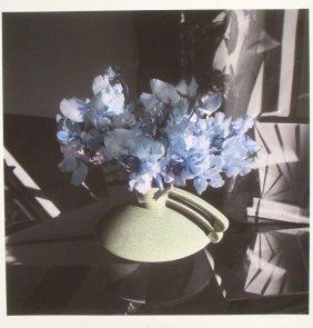 Deborah Freeman Signed Flowers Photo: Blue Sighs
