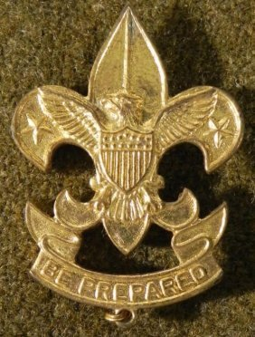 VINTAGE GOLD BOY SCOUTS OF AMERICA INSIGNIA PIN