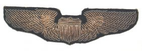 U.s. Wwii Pilot Embroidered Wings