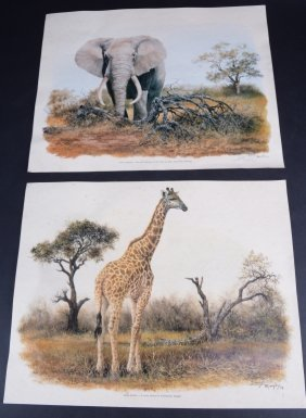 Two Denis Murphy Giraffe & Elephant Prints