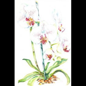"""Sally Robertson """"Orchid"""" Watercolor"""