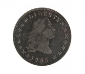 1795 Flowing Hair One Dollar