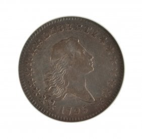 1795 Half Dollar Flowing Hair Silver Coin