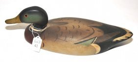 Mallard Duck Decoy With Original Paint 15""