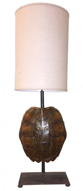 Turtle Shell Lamp