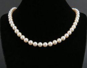 Ladies Cultured Pearl Necklace With 14 Karat Yellow