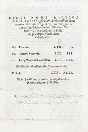 Cato Marcus Porcius