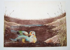 Harlequin Duck 33/250 Dan Mitra Hand Painted Lithograph