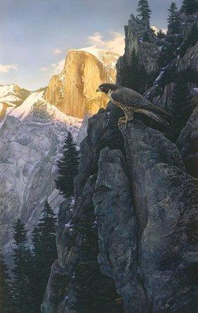 RETURN OF THE FALCON - STEPHEN LYMAN