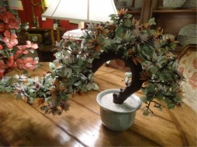 Large Chinese Jade Tree, Bonsai Style With Stone