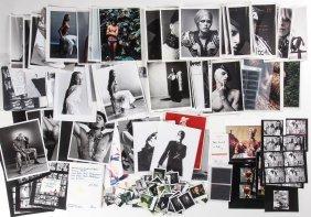 Paul Rowland Studio Photography Archive: 5 Portfolios