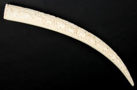 Finely Carved Ivory Tusk