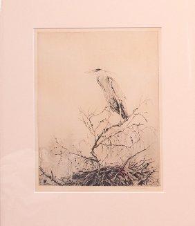 Marie Barr Kookaburra In Boree