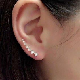 Fashion Earrings/stud