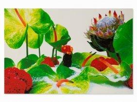 Marc Quinn, Winter Garden, Series Of 8 Pigment Prints,