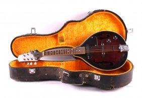 Johnson Mandolin With Case