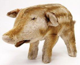 Steiff Wild Boar, Young Wild Boar, Felt Underlip And