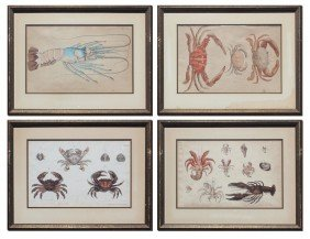 4 EARLY CRUSTACEAN ENGRAVINGS