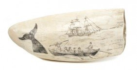 An American Scrimshaw Whale's Tooth, Length 5 3/4 I