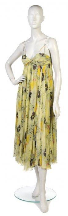 A Chloe Floral Silk Chiffon Dress.