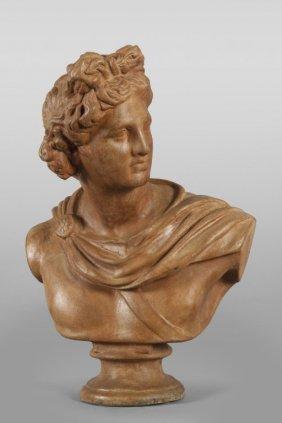 Apollo, Busto In Terracotta Cm. 53x73