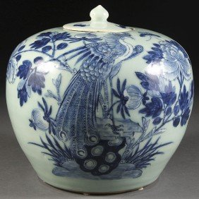A CHINESE PORCELAIN BLUE & WHITE  JAR