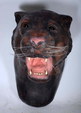 Composite Panther Head With Leather.