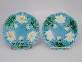 Two Villeroy & Boch Majolica Plates