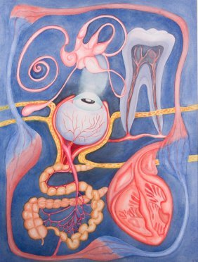"Emilie Fishman Watercolor ""organ Quintet"""