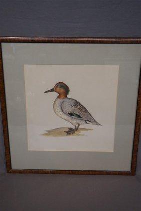 Joyce Hagerbaumer Reed (american) Wildlife Duck