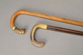 Two Canes With Horn Handles