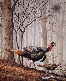 Maynard Reece Upland Series Ii Wild Turkeys And Redbud Lot 512m