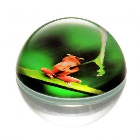 Art Glass Rainforest Frog With Leaf Paperweight