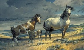 Nancy Glazier - Windy Ridge