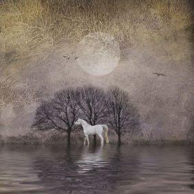 Dawne Polis. White Horse In Pond