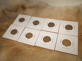 8 Us Indian Head Pennies 1901-08