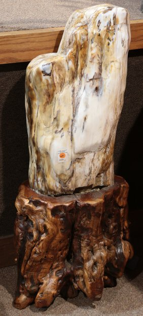 Polished Petrified Wood Abstract Figural Sculpture