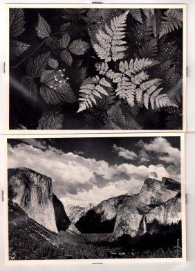 ADAMS,  ANSEL,  American 1902-1984,