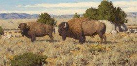 TUCKER SMITH, Bison At Slit Rock, 1991