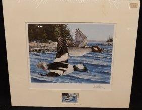 1987 Maine Buffleheads Annual Duck Stamp Print Ron Van