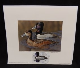 2007 Federal Duck Stamp Print - Ring - Necked Ducks By