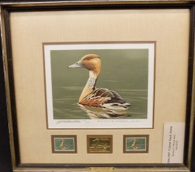 1986 - 1987 Federal Duck Stamp Print - Fulvous
