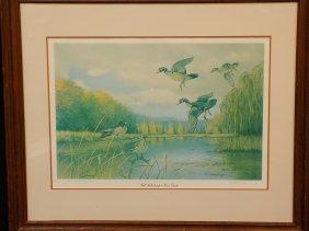 Fall Kaleidoscope Duck Print By Owen J Gromme