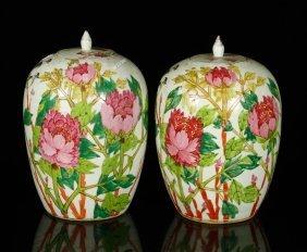2 Chinese Ginger Jars