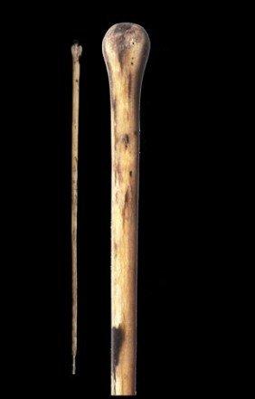 18. Bull Penis Cane-Late 19th Century-As Far Bull P