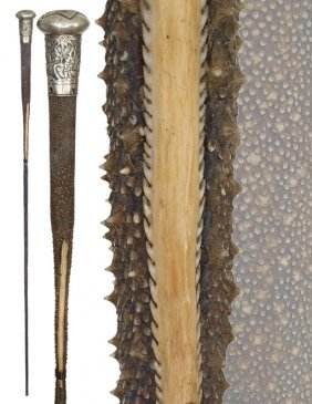 17. Stingray Tail Cane-19th Century-Fashioned Of Th