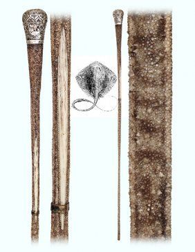 34. Shagreen And Silver Cane-ca. 1890-a Rarely