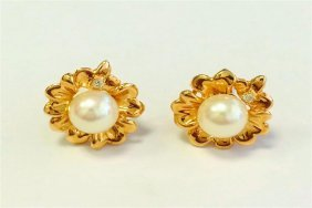 Natural Pearl Earring 14k Yellow Gold